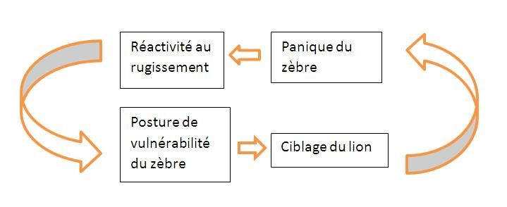 cycle de l intimidation